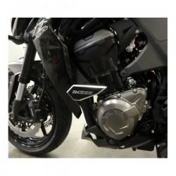 Tampons de protection Z1000 2014 est aprés.